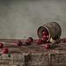 Cherries by Inna Karpova