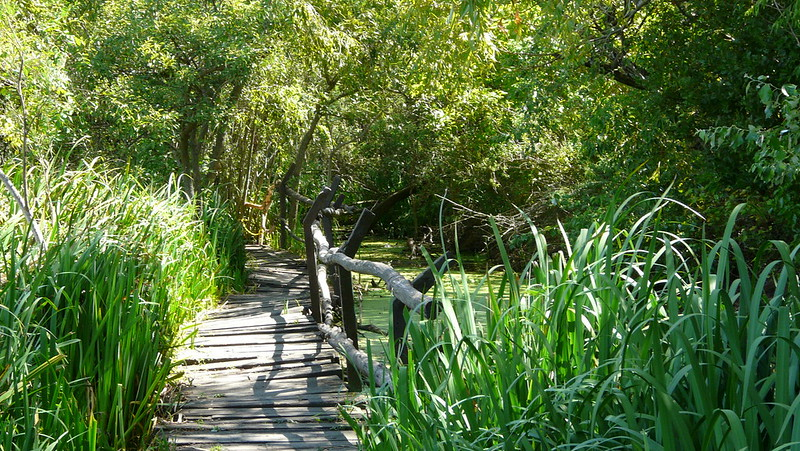 Reserva ecologica de San Isidro