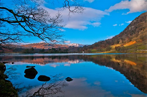 trees lake water rydal lakedistrict cumbria rydalwater northwestengland