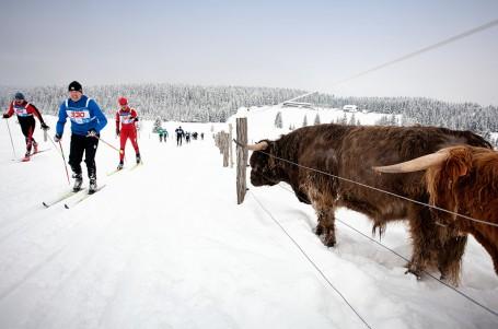 SNĚHOVÉ ZPRAVODAJSTVÍ: Zima konečně udeřila v plné síle