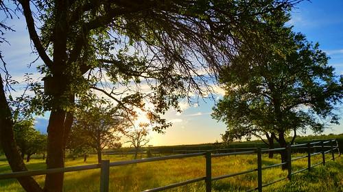 sunset art rural landscape time hiking landschaft weg spaziergang tübingen s5 wanderung damncool steiniger naturemasterclass effiart