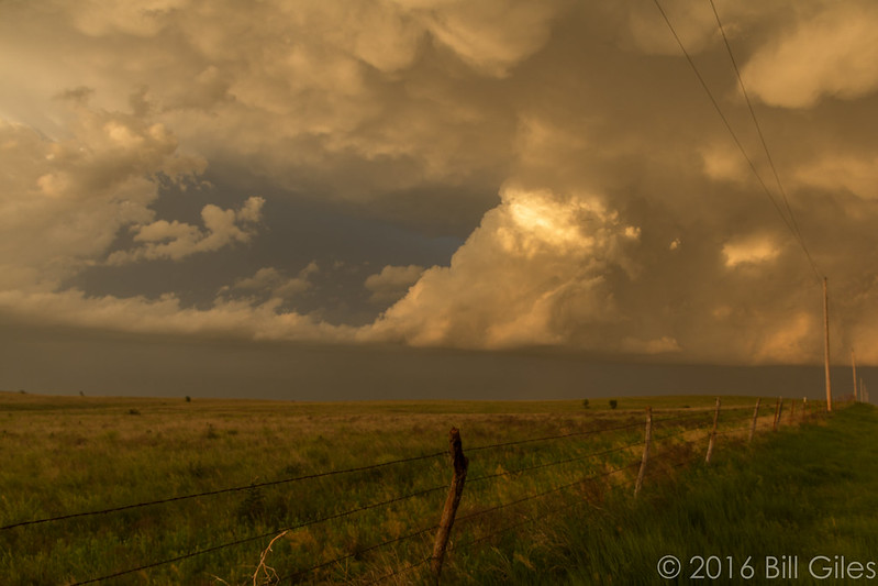 LP Supercell in field