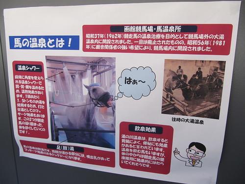 函館競馬場にある馬の温泉の解説
