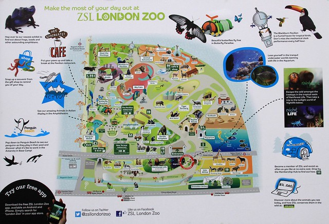 operations management london zoo and nottimham General / operations manager salary for store management develop and lead the operations a general / operations manager with late.