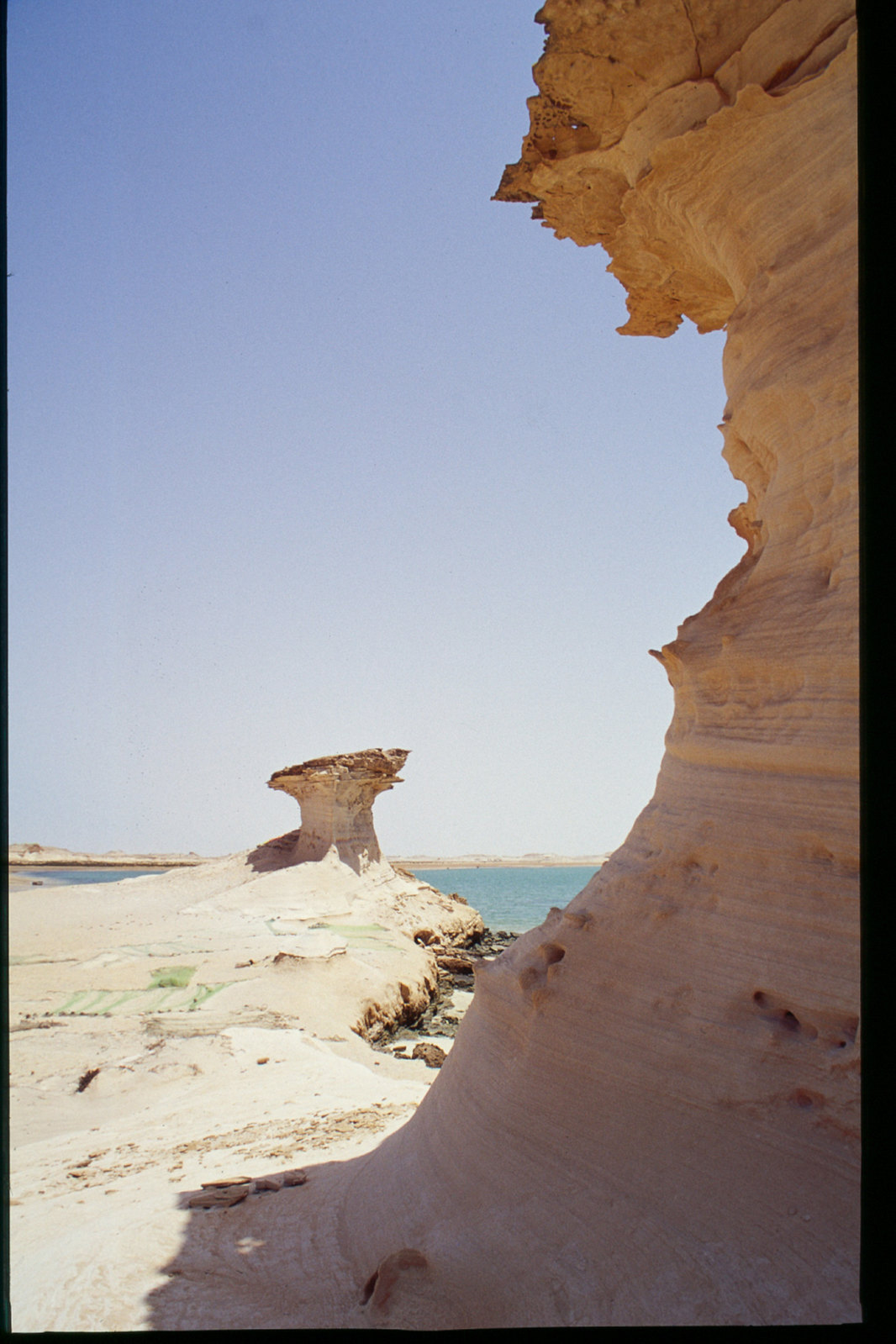 Mauritanie - Banc d'Arguin - Sculptures de vent