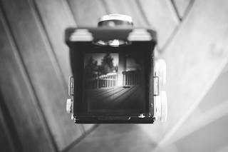 Through the viewfinder...