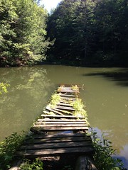 monks pond - sunken dock