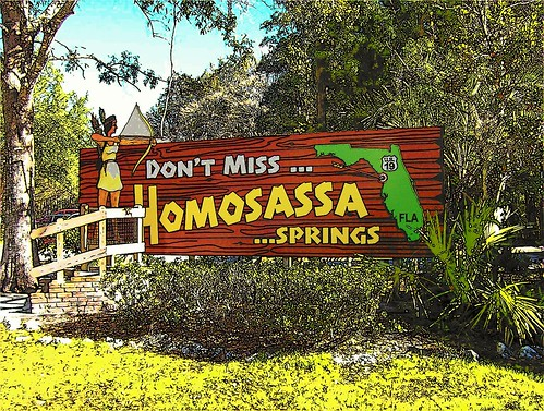Homosassa Springs, FLA by srijoseph