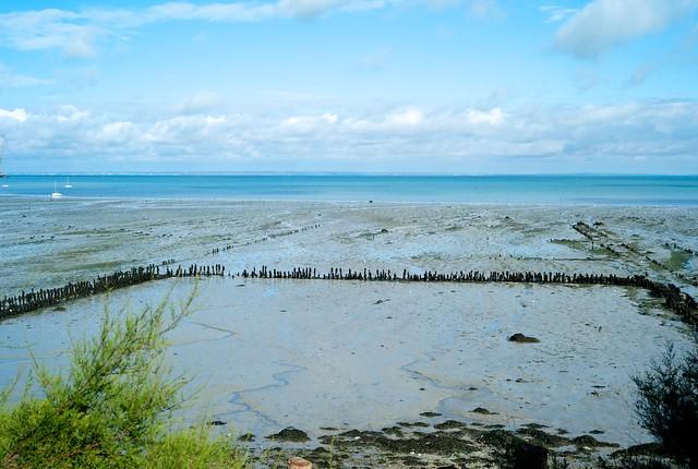 カンカル。牡蠣の養殖地。