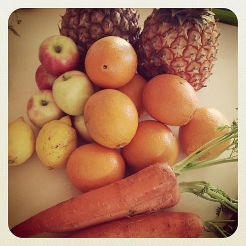 Sun Juice! Juicing today Recipe up on the Blog in the Week. www.therabbitandtherobin.co.za {follow me @robindeel on Instagram} Official @rabbitandrobin  #juicing #vegan #vegetarian #oscar #homemade #food #juice