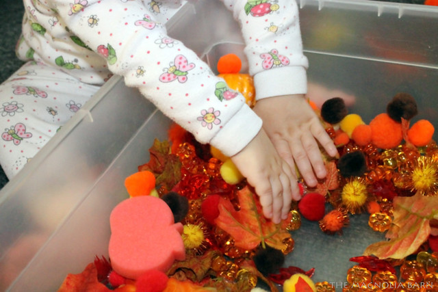 Summer and Sensory Bin