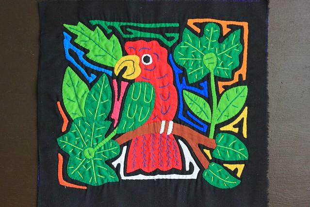 попугаи 002