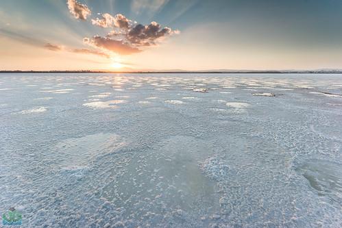 Salt Lake at Larnaca