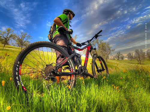 MOUNTAIN BIKING IN SEQUOIA