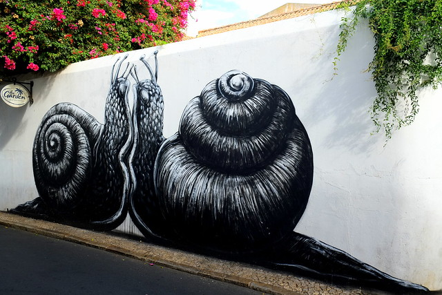 mural | roa | artur festival . lagos . portugal