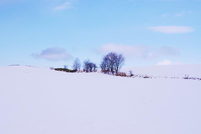 さみしんぼの雪景色