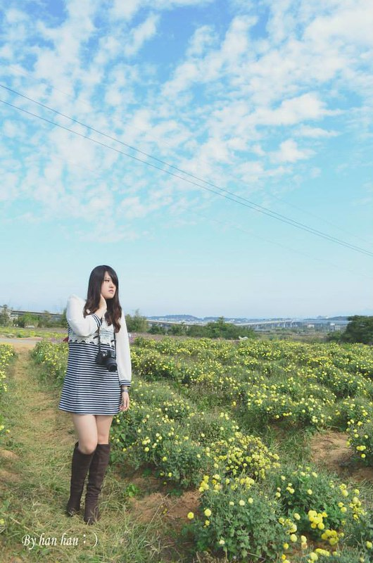 花 (8)