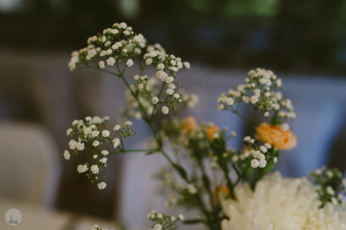 Fynbos-Estate-&-decor-Robyn-and-Grant-wedding-Fynbos-Estate-Malmesbury-South-Africa-shot-by-dna-photographers-110