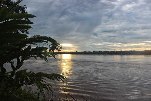 peru southamerica sunrise amazon ceibatops larigan phamilton