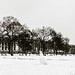 Mall in snow by vpickering