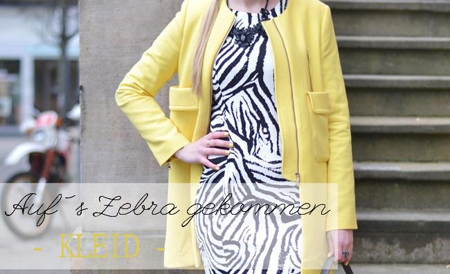 Aufs Zebra gekommen Kleid Banner