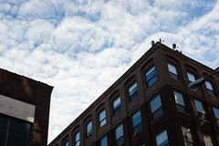 Building and Sky