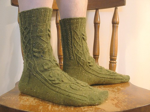 Quercus socks model 1