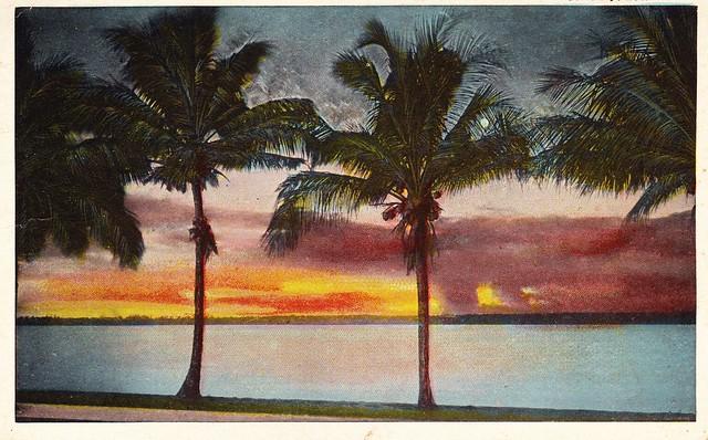 """Sunset in Florida"""
