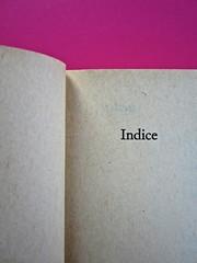 Soglie, di Gérard Genette. Einaudi 1989. Responsabilità grafica non indicata [Munari]. Indice: pag. V (part.), 1