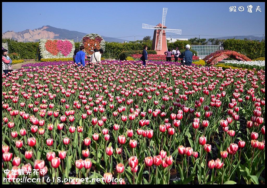 中社觀光花市DSC_1724