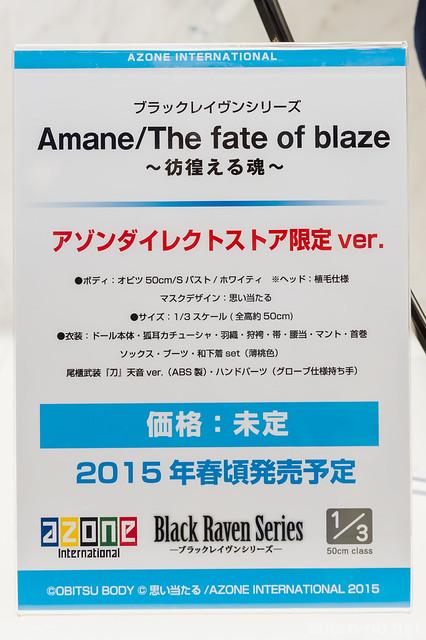 WF2015[W]_AZONE-DSC_7743