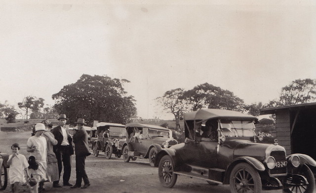 Motorcade to Audley National Park now Royal National Park undated  [RAHS Photograph Collection]