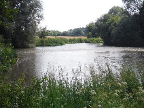 River Test, Houghton