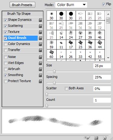 dual_brush