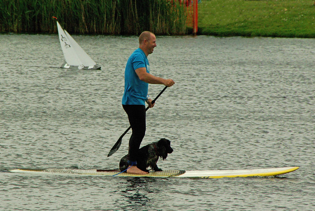Boarding, with Dog