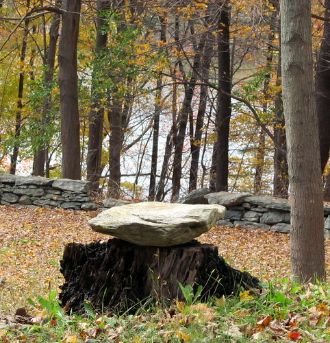 woods autumnleaves treetrunk balanced rockwall largerocks nycreservoir autumn2012