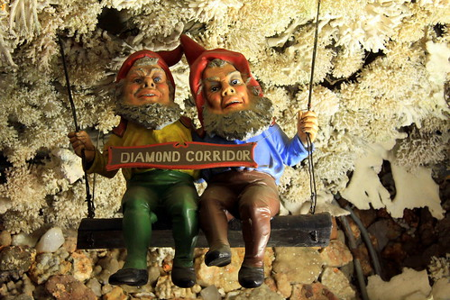 Rock City's Diamond Corridor Gnomes