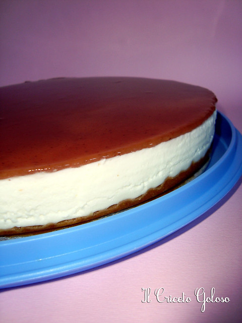 Cheesecake allo yogurt  simil cameo (2)