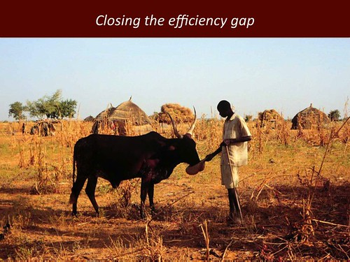 Closing the efficiency gap