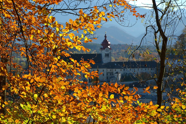 Goodbye, beloved autumn - see you next year!