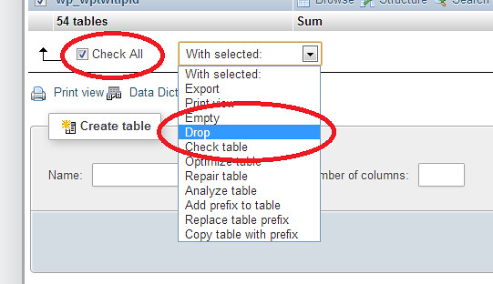 Dropping database table before importing new database