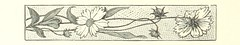 Image taken from page 98 of 'Handbook for Tourists in Yorkshire, and complete history of the county. With ... illustrations. [By W. W., i.e. W. Wheater.]'
