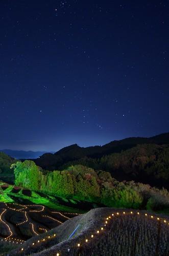 大山千枚田 棚田の夜祭り