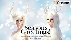 nDreams_reindeer_group