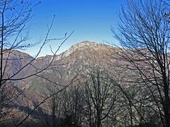 Foto per 10. Finestra, dagli Stavoli Jof, sul versante Sud del monte Piciat