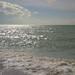 vacation-florida-boat-rentals-englewood-florida-13