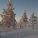 Finland Winter landscape by martin werker