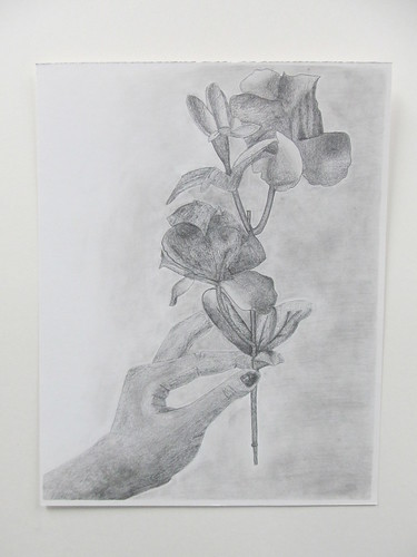 Drawing And Painting 2 Hand Holding Flower Pencil Drawing
