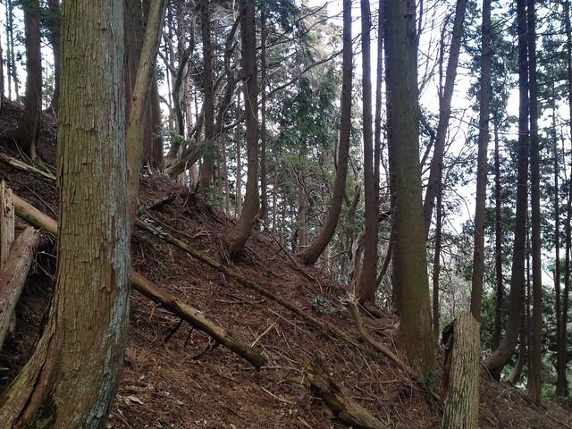 表山 登山道