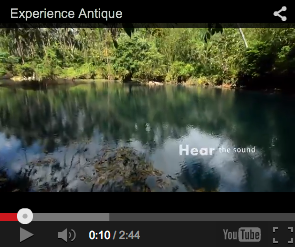 EXPERIENCE ANTIQUE